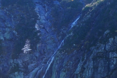 WaterFall-NW-Basin