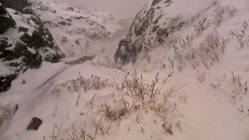 Fighting a blast of wind-driven snow midway up Yale Gully.