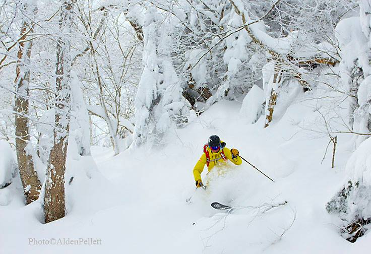Yeah, the powder isn't too bad in the Vermont backcountry right now. ;) #petracliffs,