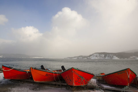 Fishing boats along a Newfoundland shore.